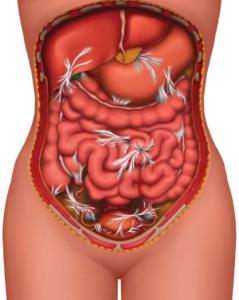 Остеопатия кишечника, лечение спайки