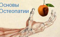 Основы остеопатии, виды и методики, а так же книга «Основы Остеопатии».