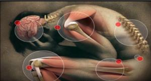 Структурная остеопатия лечит связки, спину,суставы и кости